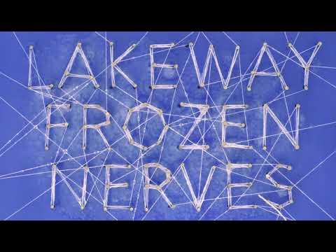 Lakeway - Synapses