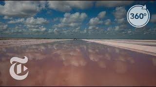 The Salty Pink Pools Of The Yucatán | The Daily 360 | The New York Times thumbnail