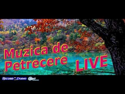 Mirela Lacatusu | Colaje Ascultari, Hore si Sarbe, Muzica de Petrecere LIVE | Nunta Stelian si Olga