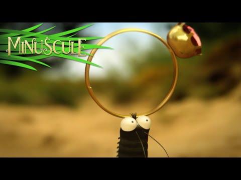 Minuscule - Valentine's Day / La Saint Valentin (Season 2)