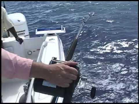 Captain ron 39 s ocean explorer bahamas deep drop fishing for Ocean explorer fishing