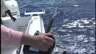 Captain Ron's Ocean Explorer - Bahamas Deep Drop Fishing