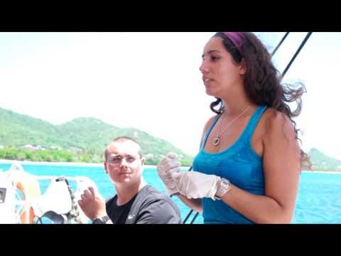 Grenadines Advanced Scuba Voyage - 2016 Alumni Editor Video