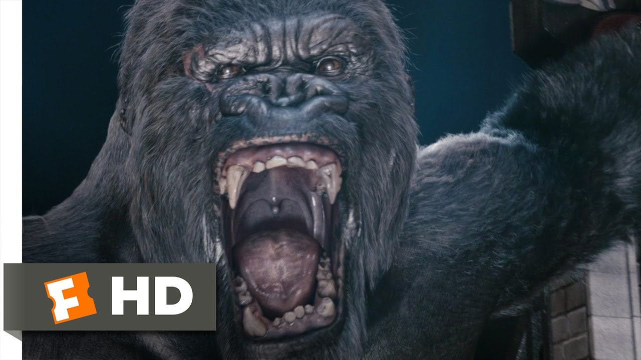 King kong 6 10 movie clip kong 39 s rampage 2005 hd - King kong 2005 hd wallpapers ...