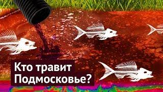 Экологическая катастрофа в Подмосковье