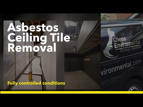asbestos-ceiling-tile-removal-feb-2017