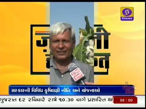 264 | BAGAYAT KHETI | PATAN | Ground Report Gujarati