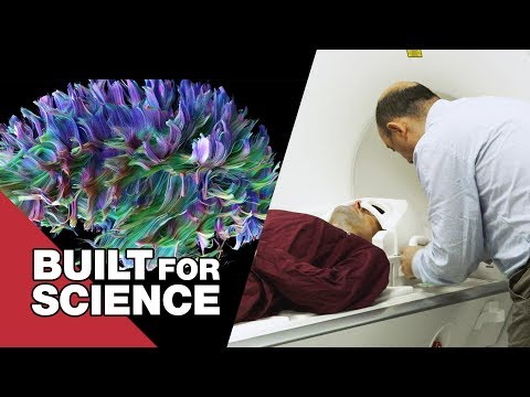 Connectome Scanning: Looking at the Brain's Wiring