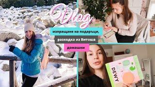 Училищен проект, подаръци в чужбина, разходка /Ерика Думбова/Erika Doumbova
