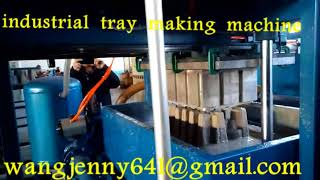 paper egg tray forming machine-0086-15153504975