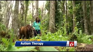 Autism Treatment: Animal-assisted Nature Exposure