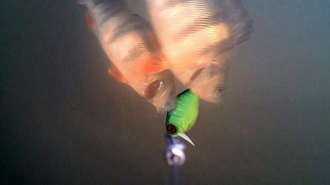 Рыбалка на Спиннинг с Подводными камерами! Атака Щуки и Окуня на воблер! Подводная съемка
