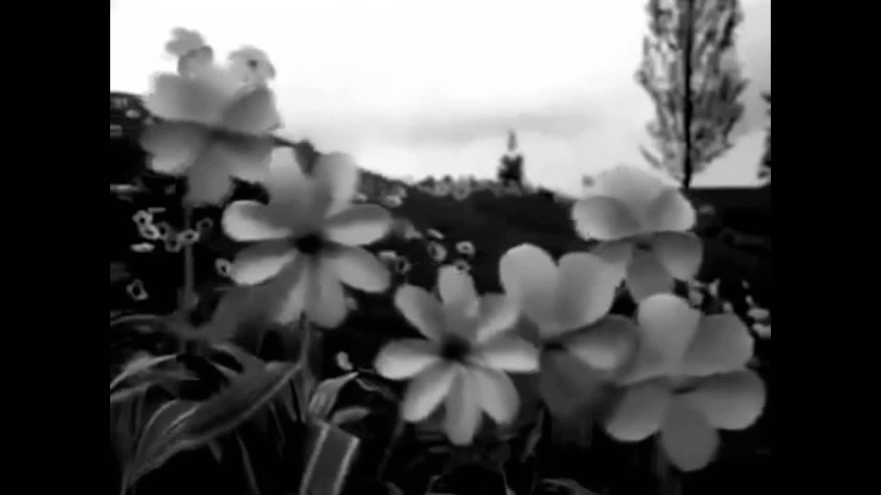Teletubbies House Mix Black White VideoSCARY FUNNY Hndrix - Teletubbies in black and white is terrifying