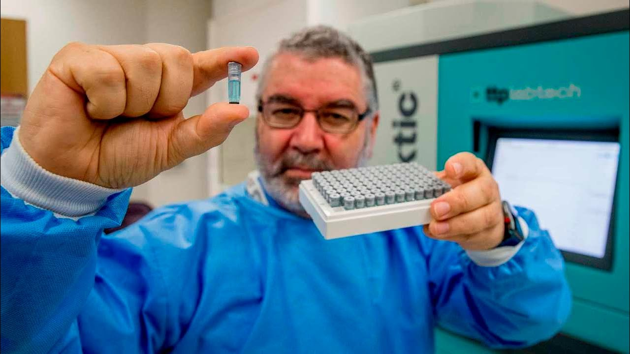 Coronavirus expert warns outbreak is 'slowly invading' Australia thumbnail