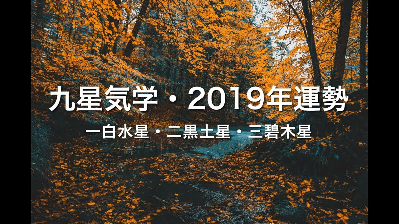占い 2019年運勢の振り返り 一白水星 二黒土星 三碧木星 高島易