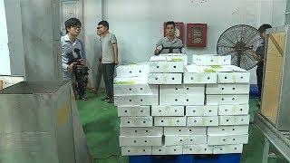 Tin Tức 24h Mới Nhất : Quy chế hoạt động Mạng lưới TBT Việt Nam