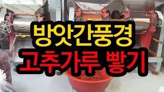 방앗간 풍경, 김장용 고추가루 빻기, 태양초, 청양고추