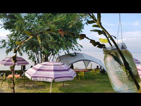 Isle Natura | Beautiful Brahmaputra View | Narengi | A Short Video |
