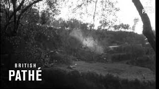 Polish Division (1944)