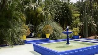 Le Jardin Majorelle, Marrakech - DSC 0117