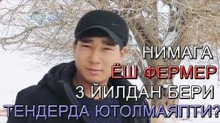 ЖИЗЗАХЛИК ЁШ ФЕРМЕР НИМАГА 3 ЙИЛДАН БЕРИ ТЕНДЕРДА ЮТОЛМАЙДИ?