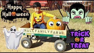 Pumpkin Patch | Happy Halloween | Trick or Treat
