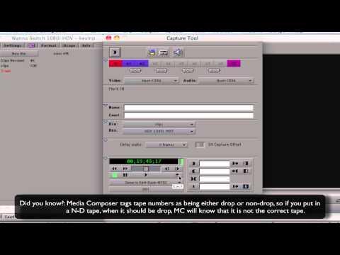Wanna Switch? - Lesson 2 - Digitizing & Importing