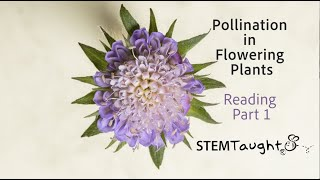 Reading Part 1 Pollination