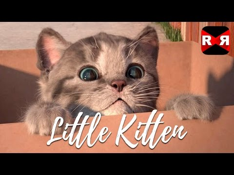 Little Kitten - My Favorite Cat - Best Interactive App For Kids & Toddlers