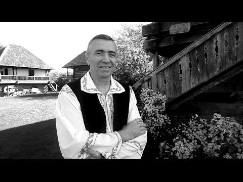 Nelu Bitana - La greu doar sora mea vine ( Oficial Video )