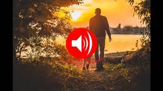 Free Music Downloader - Everything (Free Music Download No Copyright)
