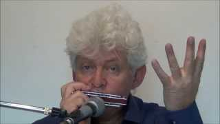 Tims Tiny Tunes #014: D7, Funk, Level 4, masterclass, Play-along lessons | Jazz harmonica licks
