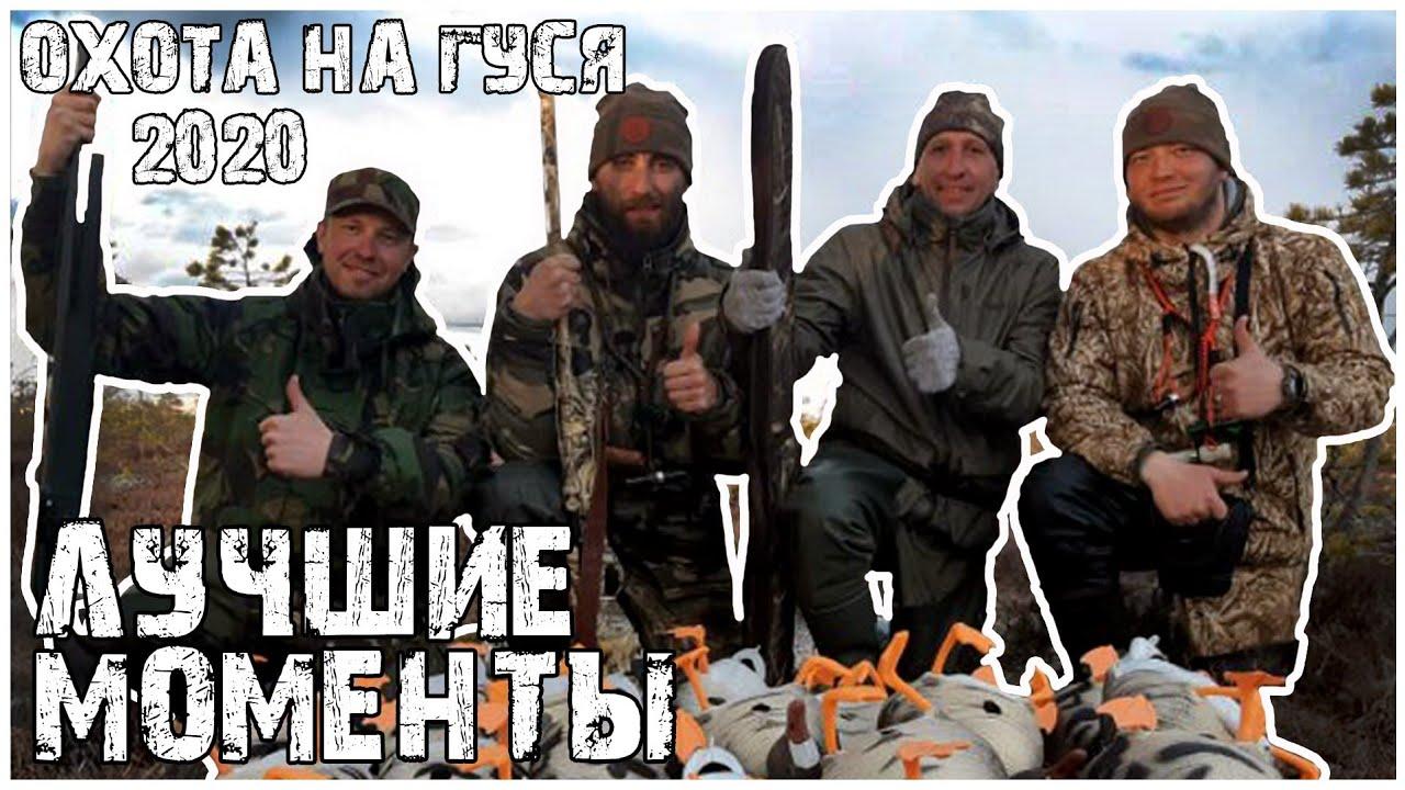 Охота на гуся 2020 Архангельск.Весна.