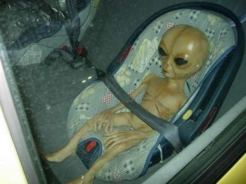 Alien Baby spotted inside strange vehicle Real Or Fake ...