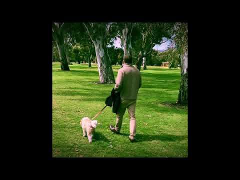 Spring In The Adelaide Parklands