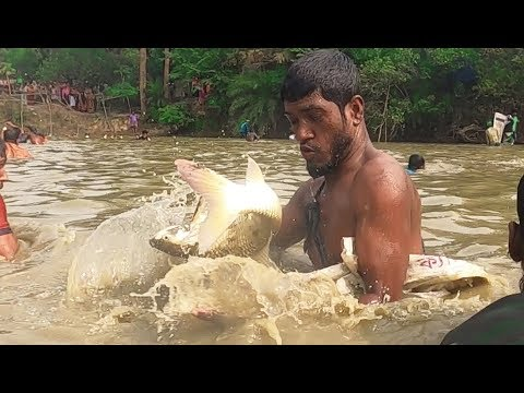 Awesome Fishing By Professional Fisherman!