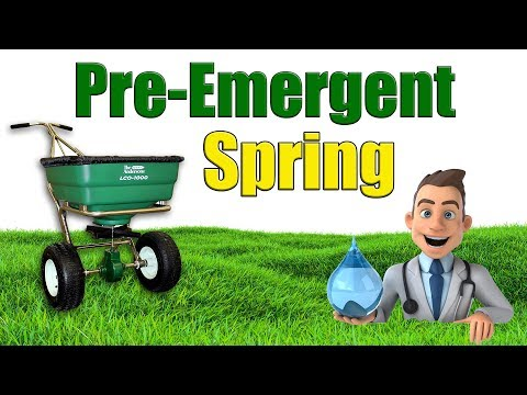 When to Put Down Spring Pre Emergent