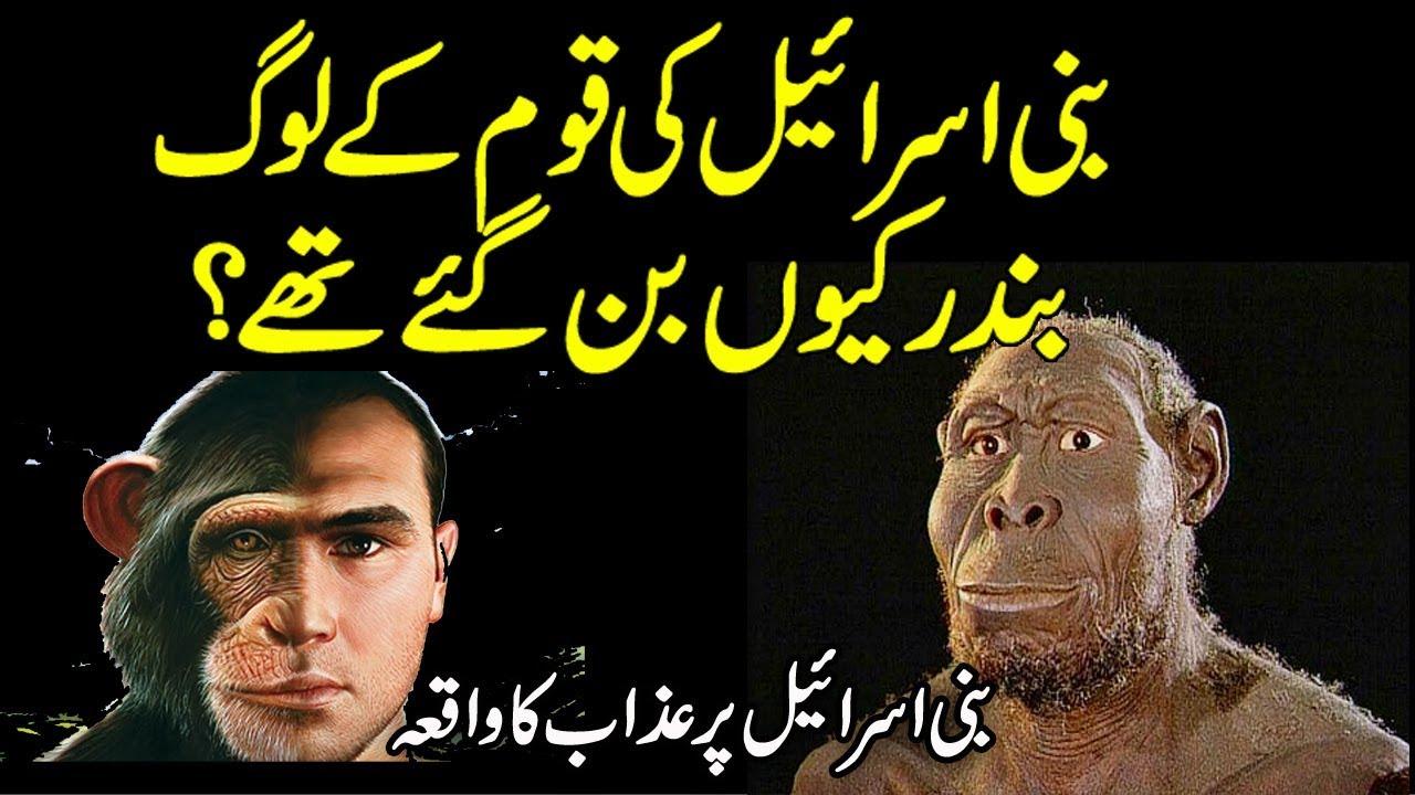 Download Bani Israel  Ki Qaum Bandar Ban Gaye urdu stories | islamic stories