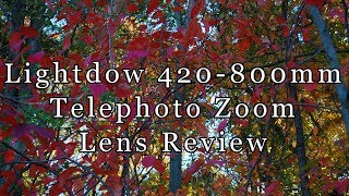 lightdow 420-800mm f/8.3-f/16: Cheap Telephoto Lens Review
