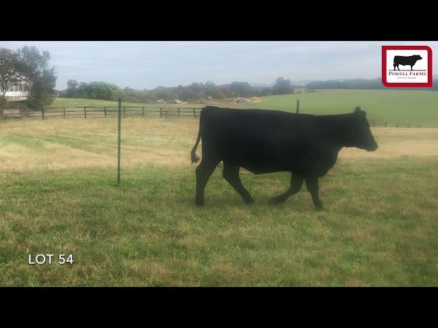 Powell Farms Lot 54