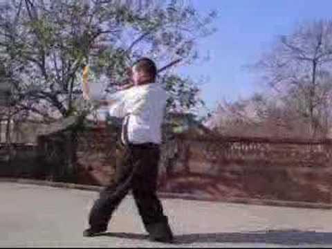 Shaolin Gung fu Pudao Form