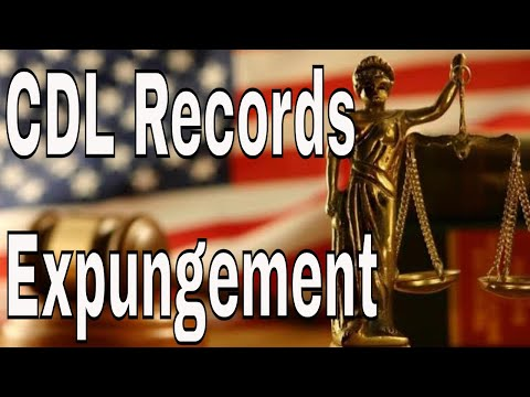 CDL Truck Driver  DMV  License Records Expungement | Red Viking Trucker | RVTGear.com
