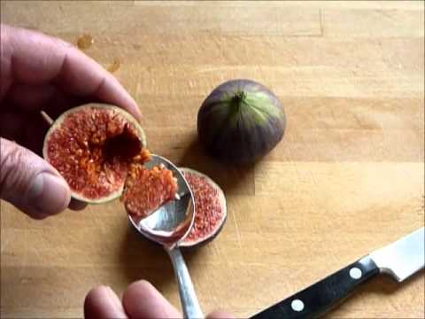 frische feigen richtig essen sehr gesund how to eat figs youtube. Black Bedroom Furniture Sets. Home Design Ideas