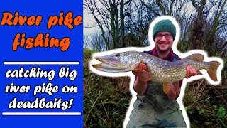 PIKE FISHING float fishing and roving for BIG PIKE