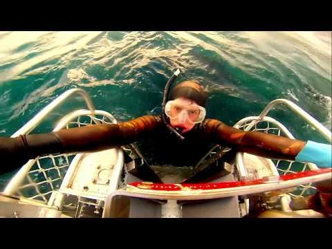 Sekol Tuna Farming 2015 Port Lincoln South Australia