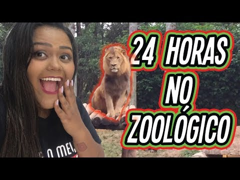 24 HORAS NO ZOOLOGICO !!!
