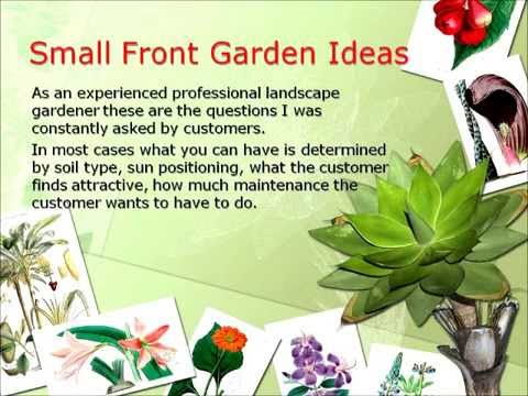 Small Front Garden Ideas And Designs YouTube