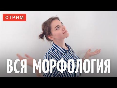 Вся морфология