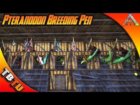 PTERANODON BREEDING PEN! BEST WAY TO BREED PTERANODON! Ark Survival Evolved E5