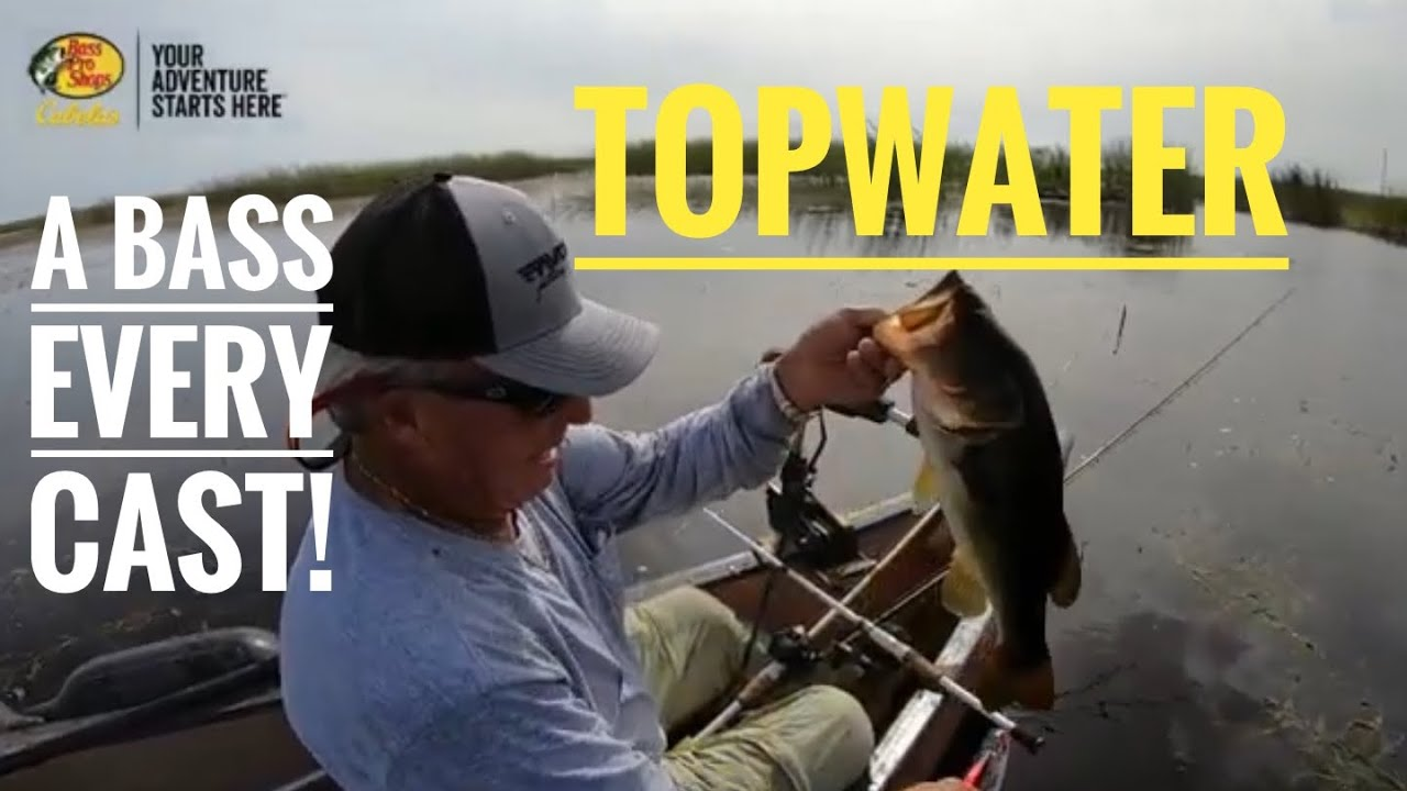 Bass every cast on topwater